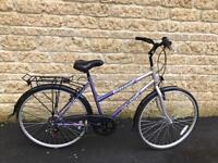 Ladis challenge bike .