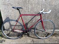 Beautiful Single Speed Bike Bicycle, 57cm, vintage, winter hack, commuter