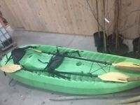 Lifetime Tandem Kayak for Sale