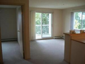 SUITE SPECIALS EVERYWHERE! 1 AND 2 BEDROOMS AVALIABLE! Edmonton Edmonton Area image 3