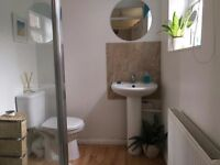GOLDEN TRIANGLE - Stunning 3 bed home for professional tenant in the heart of Norwich City