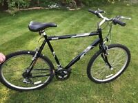 Man's Raleigh Bicycle