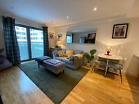 Bright modern one bedroom furnished apartment