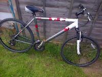 Men's Raleigh bike