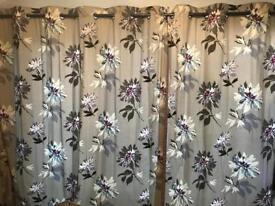 Next Eyelet Curtains 229 x 229.