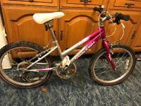 Raleigh Krush girls 20 inch wheel