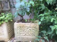 Grey Concrete Garden Tub
