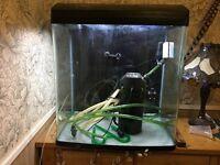 135l fish tank