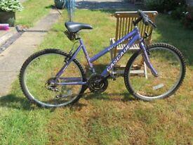 Ladies Bicycle 12 Gears