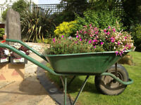 Tree and Garden maintenance- Proffessional , insured and ecologically inspired