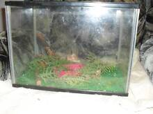 2 small fish tanks $30 the lot Davoren Park Playford Area Preview
