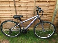 Ladies Apollo mountain bike