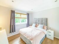 Flat share in Motherwell area