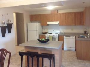 Fallowfield Towers - Oleander Apartment for Rent Kitchener / Waterloo Kitchener Area image 8