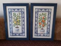 Orange and lemon tree tapestry pictures