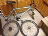 Mountain bike, diamondback