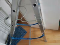 Adjustable new ladder