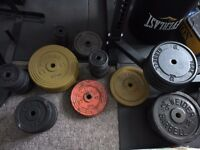 7 foot barbell, dumbbell set and Standard weights 234.36 kg with weight tree