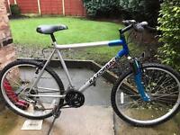 adults razorback mountain bike