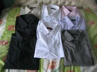 Eight 21 Inch Long Sleeved Brand New Cotton Shirts - Three for £20.00