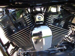 2011 harley-davidson FLTRSE3 CVO  Screamin Eagle 110 ULTRA  Save London Ontario image 14