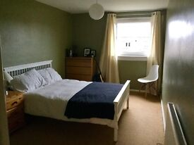 Spacious and bright double bedroom available for a young professional.