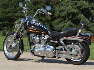 2002 harley-davidson FXDWG Dyna Wide Glide  Spectacular CVO  Loo London Ontario image 12