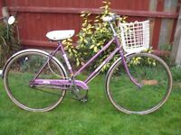 RALEIGH CAPRICE SHOPPER ONE OF MANY QUALITY BICYCLES FOR SALE