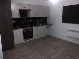 1 bed modern flat