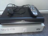 Sky box had and remote