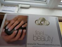 Professional Light Concept Nail system.