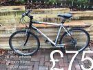 Baracuda lightweight mountain bike hardtail £75