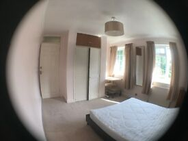 Large double bedroom (Suitable for professional)