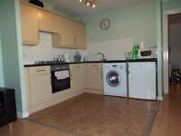 AVAILABLE NOW - TWO BEDROOM FLAT FOR RENT IN WHITECHAPEL E1