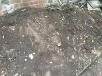 Fresh top soil to collect for free