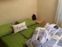 Twin bed share for Female student (£65 if share)