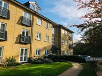 2 bedroom flat in Clarendon Way, Colchester, CO1 (2 bed) (#956590)