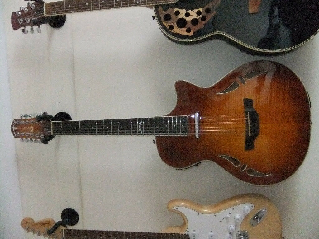 Crafter Hybrid 12 string guitar, excellent guitar, with ultra-light strings for easy action.