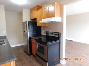 2-bdrm Renoed downtown Now or May. - 114 St