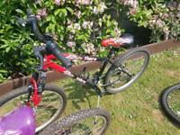 1 girls bike and 1 boys bike