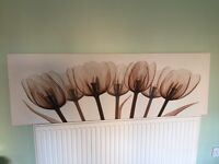 Brown tulip wall canvas £5.00
