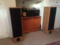 Eltax 400w speakers x2