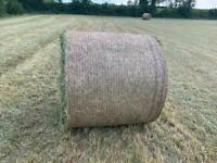 Hay forsale round bales