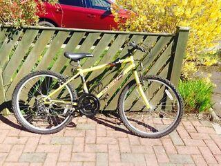 """14"""" frame unisex bike - Apollo reckless"""
