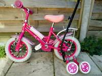 Girls 12 inch Bicycle with Buddy Bike handle and Training wheels