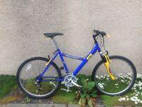 Peugeot Exo mountain bike