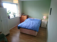 CANTERBURY SPACIOUS DOUBLE ROOM: Temporary house share in central quiet Wincheap location