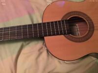 Horner Guitar