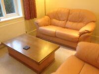 Leather Sofa, Armchair & Coffee Table