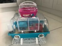 Lovely hamster with accessories